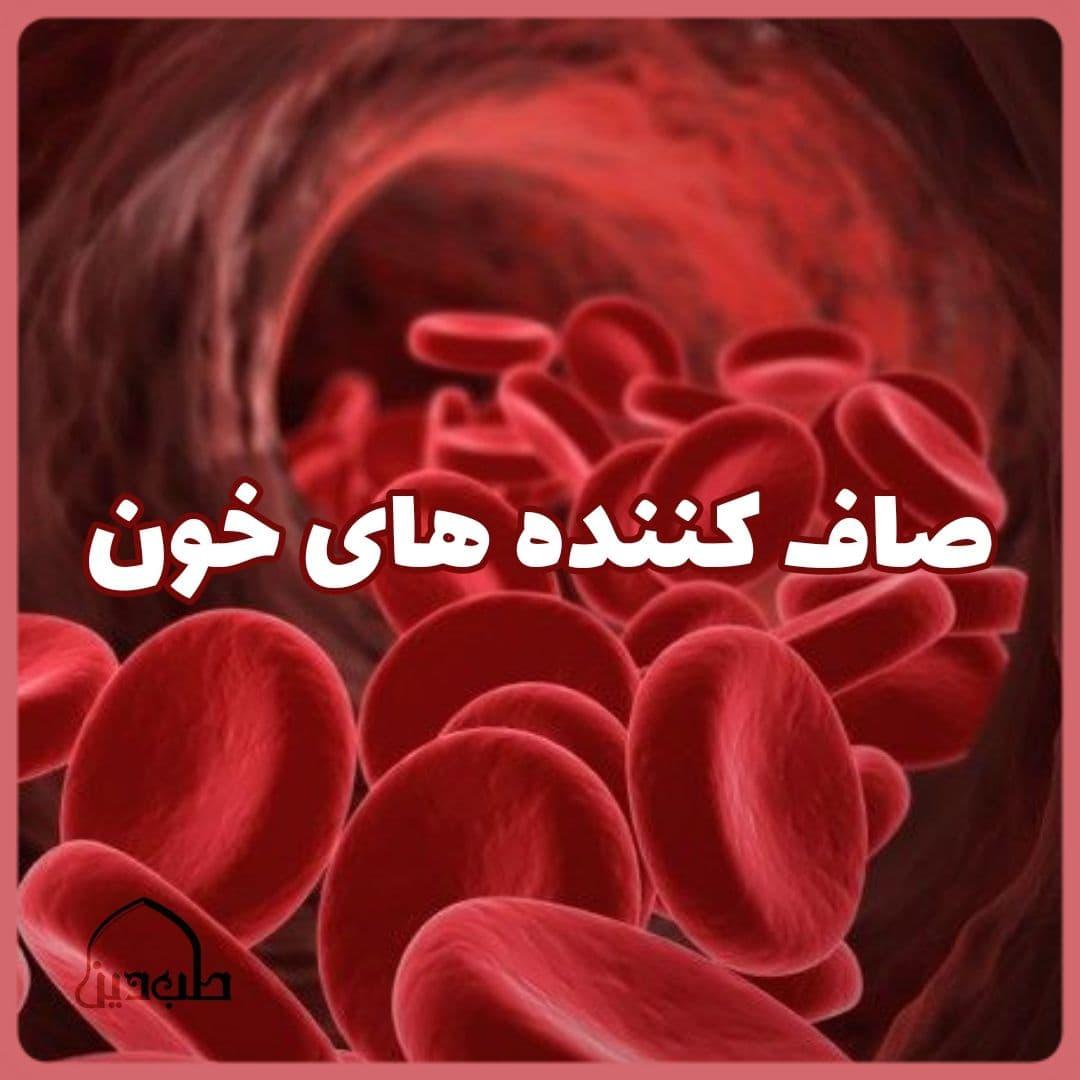 میوه های صاف کننده خون رفع غلظت خون نی نی سایت روازاده خیر اندیش